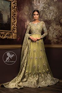 Designer Dress 2017 - Lime Green Fully Embroidered Back Trail Bridal Maxi