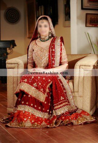 Deep Red Rust Bridals Wear Lehnga